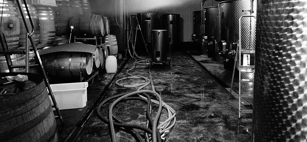 Cuves de fermentation